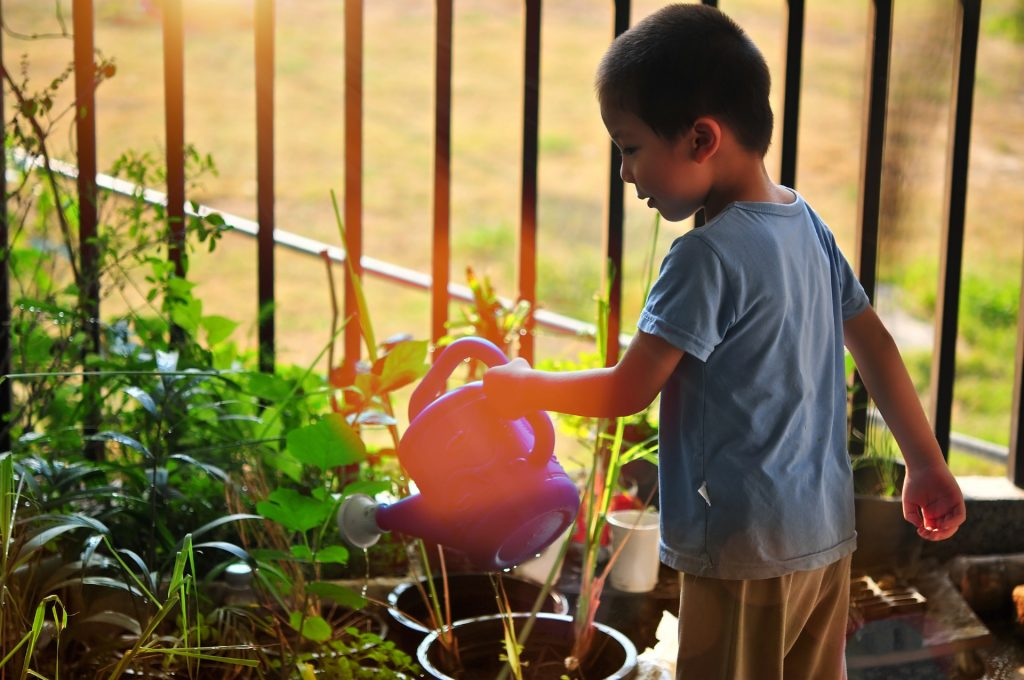 Sustainability in Childcare